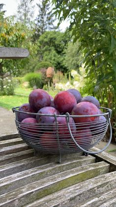 Plum, Fruit, Little Things, Harvest, Lawn And Garden