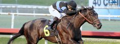 Leading California Kentucky Derby 2014 contender, Shared Belief, is owned by sportscaster Jim Rome.