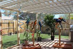 outdoor aviary