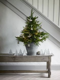 Made in heaven: Its beginning to look a lot like christmas