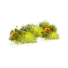 43.png ❤ liked on Polyvore featuring flowers, grass, plants, filler and effects