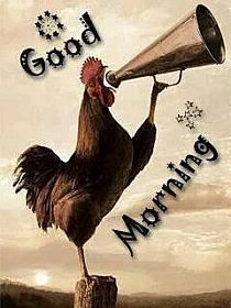 Good Morning Google, Good Morning Hug, Good Morning Wishes Friends, Good Morning Massage, Good Morning Dear Friend, Good Morning Greetings, Latest Good Morning Images, Good Morning Beautiful Pictures, Beautiful Morning Messages