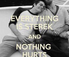Everything is Sterek.