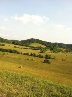 so, i guess i'm a teensy weensy bit nostalgic for hay bales and winding roads. miss you, Tn.