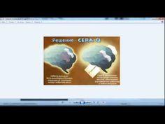 Знакомство с M1ND  Продукт для оптимальной памяти