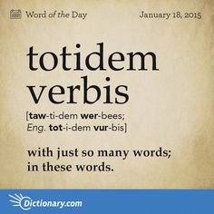 Latin Phrase: Totidem Verbis (phrase) with just so many words; in these words. Words To Use, Big Words, More Words, Unusual Words, Unique Words, Beautiful Words, Latin Phrases, Latin Words, Idioms And Proverbs