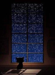 Peaceful night, I love how the stars look. Illustrations, Illustration Art, To Infinity And Beyond, Nocturne, Crazy Cats, Night Skies, Cat Art, Fantasy Art, Art Drawings