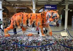 Faith Bebbington's 1.5m long Bengali tiger was created using recycled materials from Merseyside's household recycling bins. The tiger is made from over 300 milk bottles and sits on 58,230 cans. Gloucestershire Resource Centre http://www.grcltd.org/scrapstore/