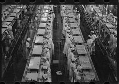Grapefruit packing plant Winter Haven, Florida. 1933 Library of Congress.