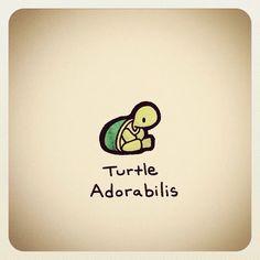 Cute turtle from Turtle Wayne 🐢 Cute Turtle Drawings, Cute Drawings, Animal Drawings, Cute Turtles, Baby Turtles, Sweet Turtles, Tiny Turtle, Turtle Love, Kawaii Turtle