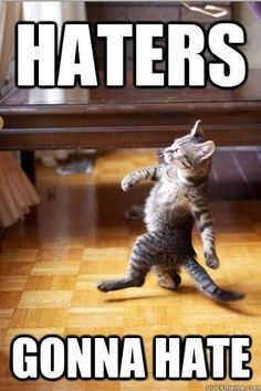 "If by ""haters gonna hate"", you mean, intelligent people are going to be annoyed by your stupidity and ignorance. Then yes, haters gonna hate"