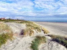 West Wittering, Sand Dunes and Beach by David Dixon, via Geograph