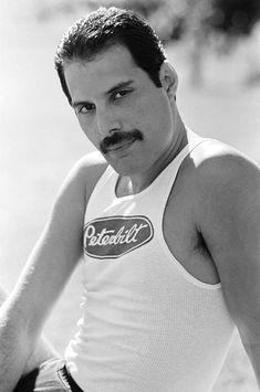 Photobook Of The Queen Mercury ⭐👑 Queen Freddie Mercury, Freddie Mercury Quotes, Freddie Mercury Mustache, Queen Band, John Deacon, Foo Fighters, Freddie Mercury Zitate, Freddie Mecury, Impression Poster