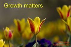Growth matters ~ do it with intention. ~Kathy~ www.refreshmentzone.com