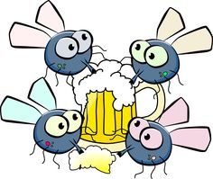 Flies Drinking Beer Festival transparent image