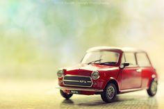 Mini Cooper 1974 - Davide Solurghi Photography - Still Life photo by DavideSolurghiPhotography - Abestof - Still life photos - A Best of - Most view and like. Visit our best of your searches for: photo, video and website. Toys Photography, Still Life Photography, Still Life Photos, New Toys, Toys For Boys, Toddler Activities, Cars, Bokeh, Miniature