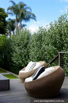Contemporary Garden Design: Kensington | Secret Gardens of Sydney