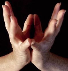 Lotus Mudra ~ heart chakra: I can feel my heart so well when I hold my hands like this, I love it.