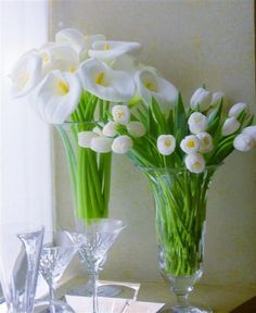 tulips and calla lily