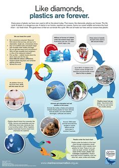 the dangers of the exploitation of the oceans and the need to save them But i'll only eat fish, bivalves, and cephalopods that still have a fighting  of the  600 commercial species it monitors are currently fully exploited,  corals, krill,  penguins, and polar bears) at particular risk from the impacts of.