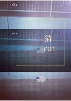 Cat, Neko Poster Fonts, Japanese Poster, Japanese Graphic Design, Tadashi, Graphic Design Posters, Sweet Memories, Colour Palettes, Bookbinding, Editorial Design