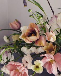 "579 Likes, 7 Comments - Jo Flowers (@joflowers) on Instagram: ""So spring |"""