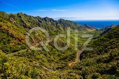 Qdiz Stock Photos | Green mountains with winding road,  #Atlantic #blue #Canary #cloud #day #green #horizon #island #landscape #mountain #nature #ocean #road #rock #scenic #sea #serpantine #sky #Spain #spring #Tenerife #valley #view #winding