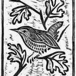 Wren lino print