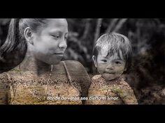 """Matarife """"Un Genocida Innombrable"""" Capítulo 6 """"La sombra en el palacio"""" - YouTube Youtube, Movie Posters, Movies, Art, Law, Palaces, Shades, Colombia, Art Background"""