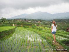 Mon itinéraire de 4 semaines en Indonésie