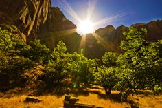 "Five Tips For Great Sunset Photos. Author: Andrew Goodall. Photo: ""Zion National Park"" captured by Mike M. http://www.picturecorrect.com/tips/sunset-photos-tips-techniques/"