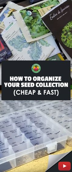I went into my garden shed and had about 100 seed packets lying around in a box.so I decided to organize them so I actually know what seeds I have and how . Greenhouse Gardening, Container Gardening, Vegetable Gardening, Botanical Gardens Near Me, Egg Shells In Garden, How To Propagate Lavender, Organic Gardening Magazine, Annual Flowers, Small Space Gardening