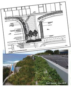 Sustainable Architecture brings this Coastal Residence to Life! - Fytogreen Australia Roof Gardens, Garden Maintenance, Rooftop Garden, Built Environment, Sustainable Architecture, Natural Materials, Sustainability, Coastal, Australia