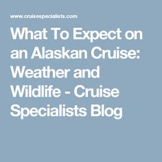What To Expect on an Alaskan Cruise: Weather and Wildlife - Cruise Specialists Blog