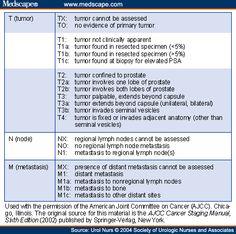 ajcc staging manual 8th edition pdf