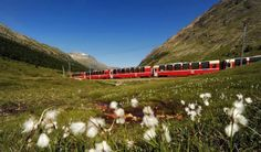 The Most Stunning Train Routes around the world, pictured is the Bernina Express from Switzerland to Italy. via #thoughtandsight travel blog.