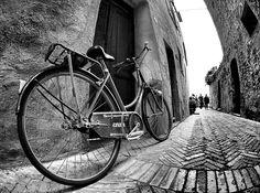 fishing the Cinzia'bike di stefano romei