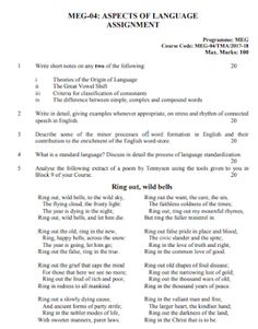 essay for mba example college