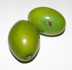 Three Lime Green Tagua Nut Beads XL Beads Olive by EcoBeadsTagua, $7 ...