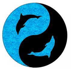 dancing blue dolphins