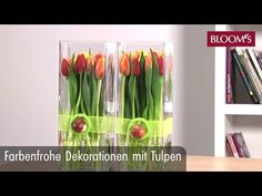 Farbenfrohe Deko mit Tulpen - YouTube Spring Decoration, Garden Seating, Colorful Decor, Bloom, Modern Decor, Asparagus, Bouquet, Youtube, Home Decor