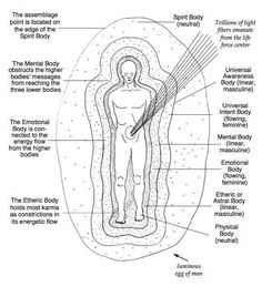 The Seven Bodies1. Physical Body:The physical body is the anchoring point for your Higher Self to explore the mystery of your being within physicality.