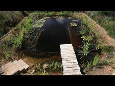 Natural Pool selfbuild - YouTube ça conduit à toute une chaîne de vidéos sur…