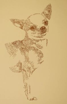 Chihuahua: Dog Art Portrait by Stephen Kline - art drawn entirely from the word Chihuahua. drawdogs.com : drawdogs.com http://drawdogs.com/product/dog-art/chihuahua-dog-portrait-by-stephen-kline/ His collectors number in the thousands from over 20 countries and every state in the US. Kline's dog art has generated tens of thousands of dollars for dog rescues worldwide.