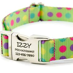 Polka Dot Dog Collar Personalized with custom by PupPanache