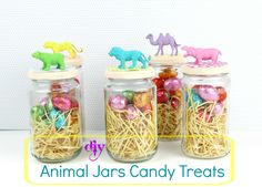 Diy Animal Jars Candy Treats!!!