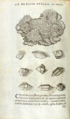 Boodt (also: Boot), Anselmus Boëtius de, Gemmarum et Lapidum Historia, 1647