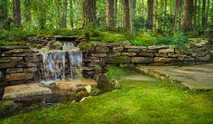 Gallery - Lumiere Gardens