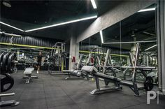 Strength / Weight Training Zone