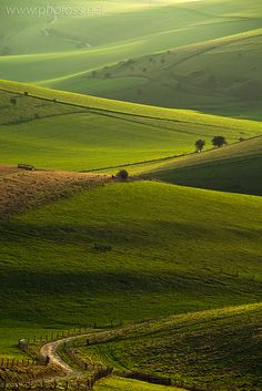 The South Downs - East Sussex - England. Wouldn't mind swapping the office for a bit of English countryside right now! England Countryside, British Countryside, Image Nature, England And Scotland, Essex England, England Uk, Voyage Europe, East Sussex, Sussex Downs